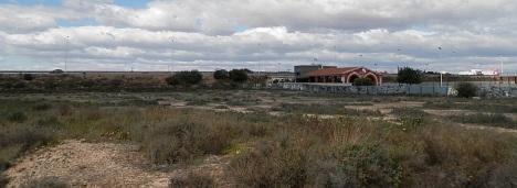 Vista general de una de las parcelas afectadas