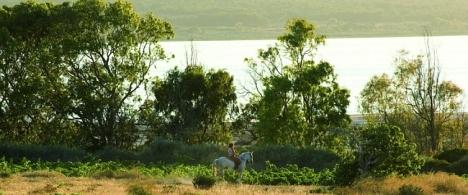 Paradísiaca vista de Las Lagunas de La Mata