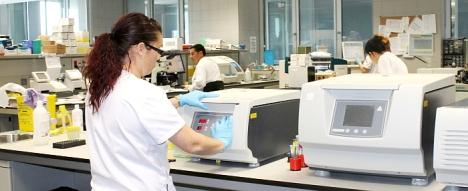 laboratorio de investigación - Hospital de Torrevieja