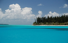 Isla de los Pinos, Nueva Caledonia. (Fotografía cortesía de P. Guiraudou)