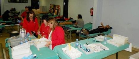 X Maratón de sangre en Torrevieja, enero de 2013