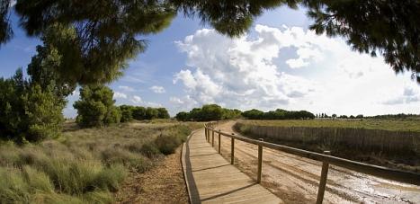 Parque Natural de la Laguna de La Mata y Torrevieja