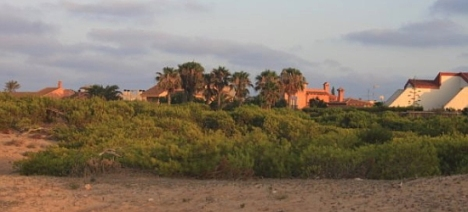 """El Parque Molino del Agua """"tesoro"""" ecológico de la ciudad de Torrevieja"""