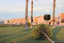 VÍDEO 1: Temporal de Viento en Torrevieja 1