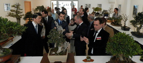 Inauguración Jornadas del Bonsai 2013 (Archivo)