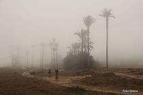 VÍDEO: La niebla invade Torrevieja