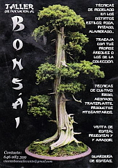 BOSAIS