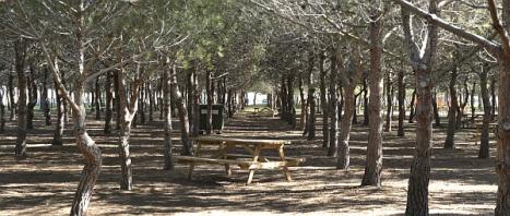 Lo Albentosa, tesoro ecológico de Torrevieja