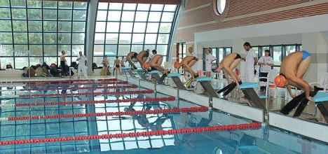 Nadadores con aletas (Archivo)