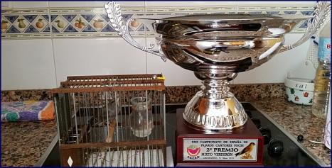 Trofeo obtenido