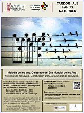cartel concierto-page-001