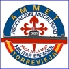 asociacion-modelismo-militar-espa_ol-de-torrevieja_1