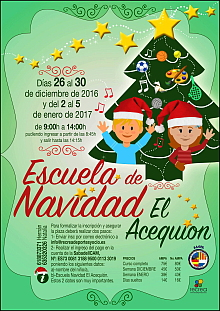 cartel-curso-navidad-acequion